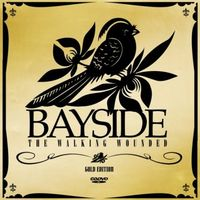 Bayside - Walking Wounded