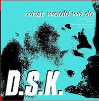 DSK - What Would We Do (Junior Boy's Own Mixes)
