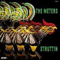 Meters - Struttin (Hol)