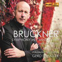 Gerd Schaller - Symphony in F Minor
