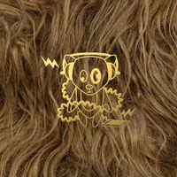 Super Furry Animals - Super Furry Animals at the BBC