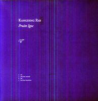 Kangding Ray - Pruitt Igoe