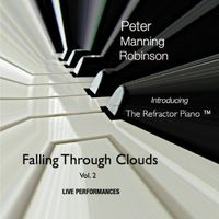 PETER MANNING ROBINSON - Falling Through Clouds 2