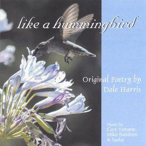 Like a Hummingbird