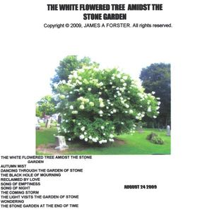 White Flowered Tree Amidst the Stone Garden