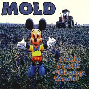 Sonic Youth at Disney World