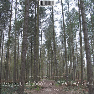 Severn Valley Soul 1