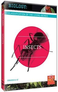 Biology Classification: Insects
