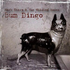 Bum Dingo