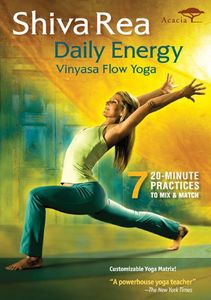 Daily Energy Flow