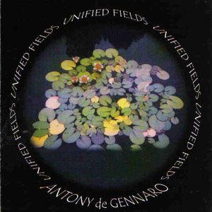 Unified Fields