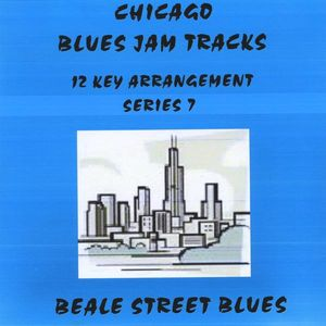 Chicago Blues Jam Tracks Series 7