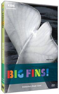 Big Fins