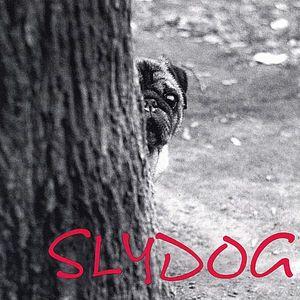Slydog