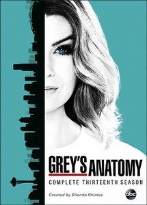 Grey's Anatomy: Complete Thirteenth Season