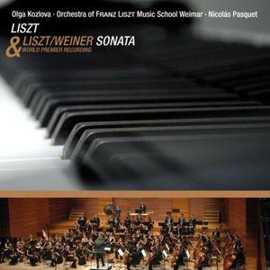 Sonata in B minor