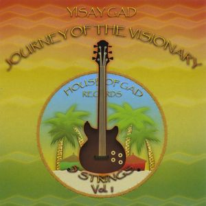 Journey of the Visionary-5 Strings 1