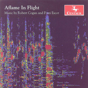Aflame in Flight