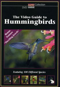 Video Guide to Hummingbirds