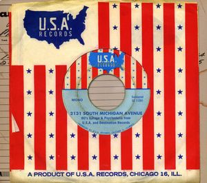 2131 South Michigan Avenue: 60's Garage and Psychedelia From USA AndDestination Records