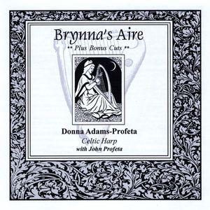 Brynnas Aire