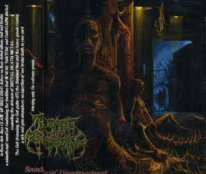Sounds of Disembowelment [Import]