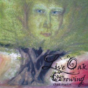 Live Oak Growing