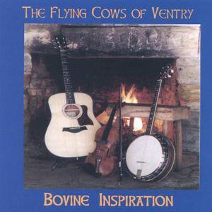 Bovine Inspiration