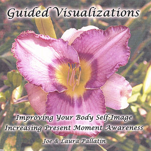 Guided Visualizations