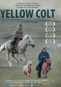 Mongolian Invasion: Yellow Colt