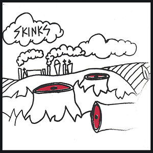 Skinks
