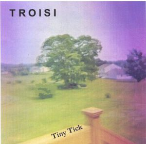 Tiny Tick