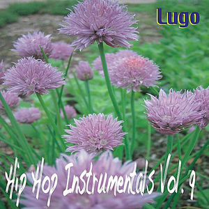 Hip Hop Instrumentals 9