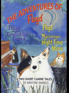 The Adventures of Floyd
