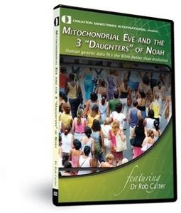 Mitochondrial Eve & 3 Daughters Of Noah