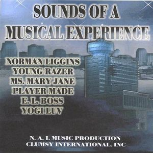 Sounds of a Musical Experience