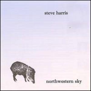 Northwestern Sky