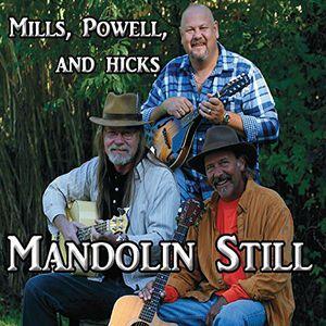 Mandolin Still