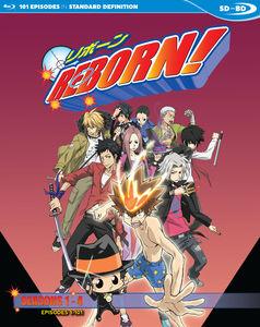 Reborn: Seasons 1 - 4