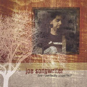 Joe Songwriter Live-Perfectly Imperfect