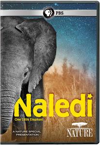 NATURE: Naledi - One Little Elephant