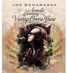 An Acoustic Evening at the Vienna Opera House