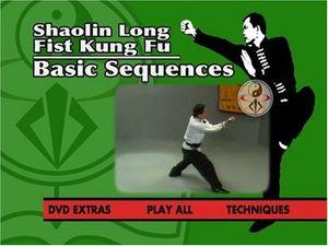 Shaolin Long Fist Kung Fu