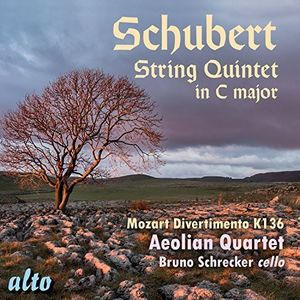 String Quintet in C Major /  Divertimento in D