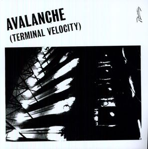 Avalanche (Terminal Velocity)