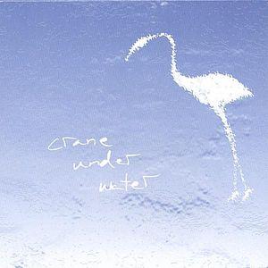 Crane Under Water