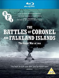 The Battles of Coronel and Falkland Islands: The Great War at Sea [Import]