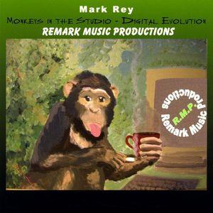 Monkeys in the Studio-Digital Evolution