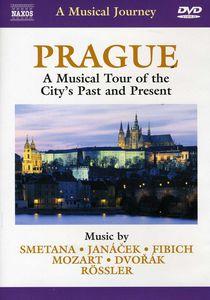 Musical Journey: Prague Musical Tour City's Past