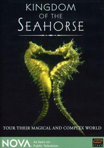 Nova: Kingdom of the Seahorse